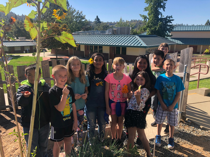 4th and 5th graders enjoying the garden.