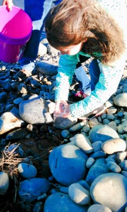Salmon release by 2nd grade girl